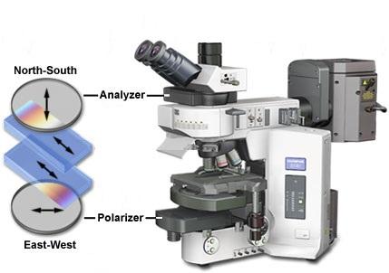 Что такое поляризационный микроскоп и в чём его особенности?