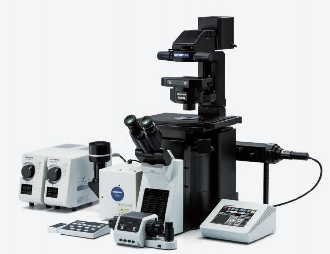 Конфокальные микроскопы – область использования и характеристики